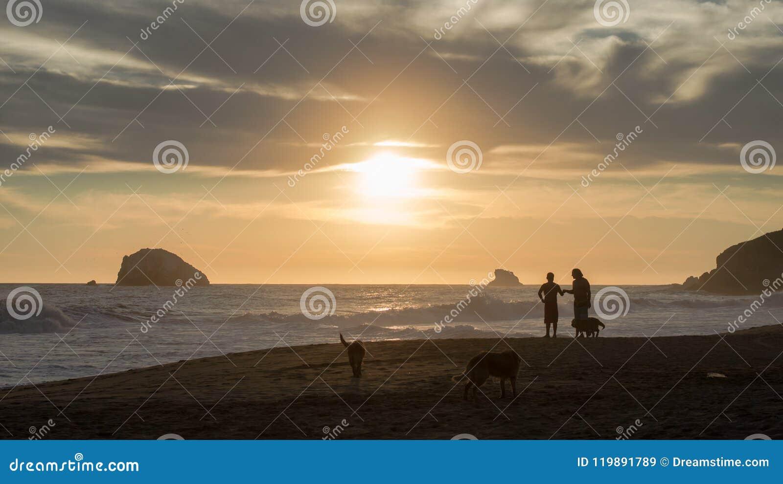 Freunde und Hunde am Strand während des Sonnenuntergangs