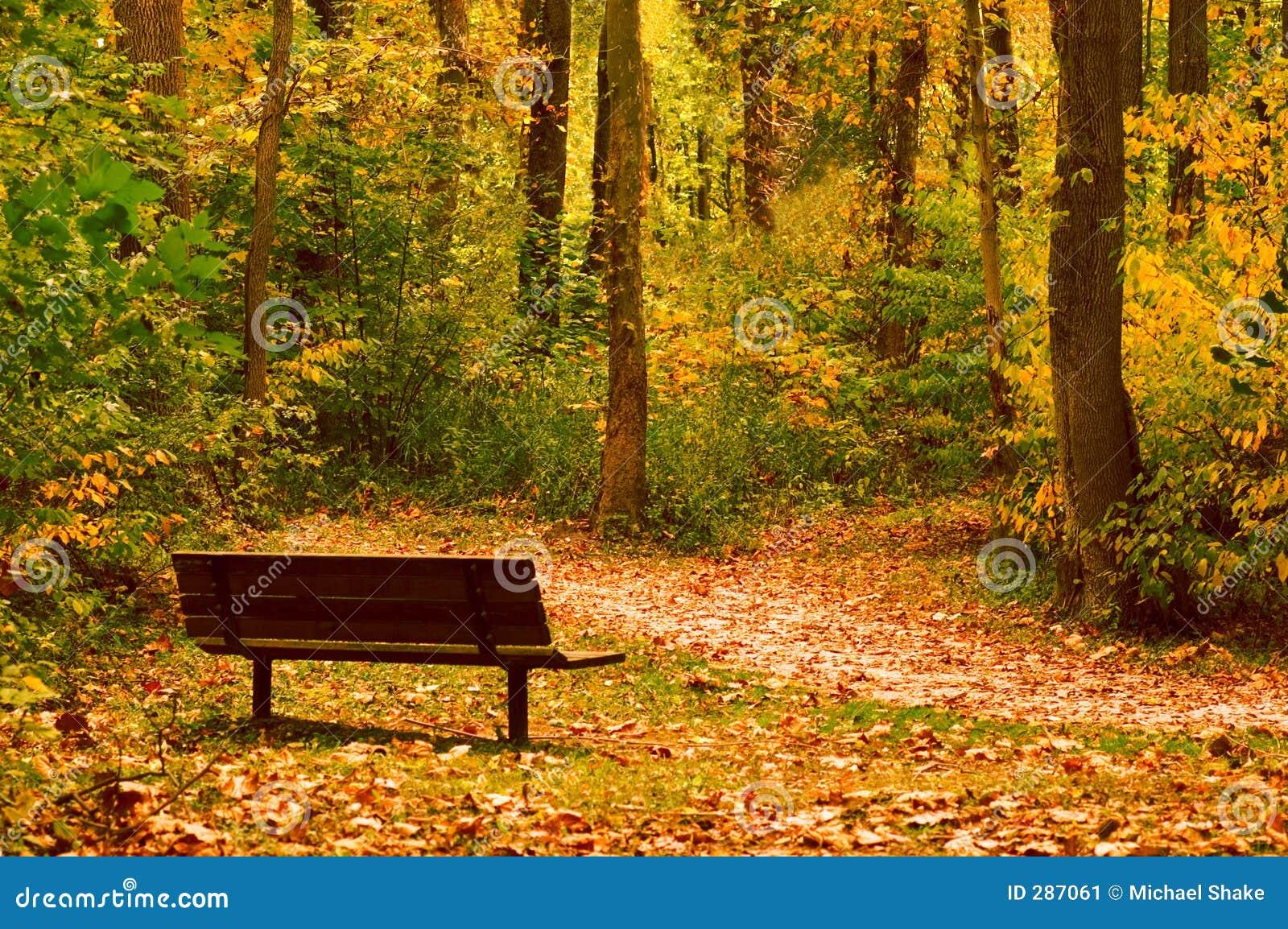 Fridsamt vila för ställe