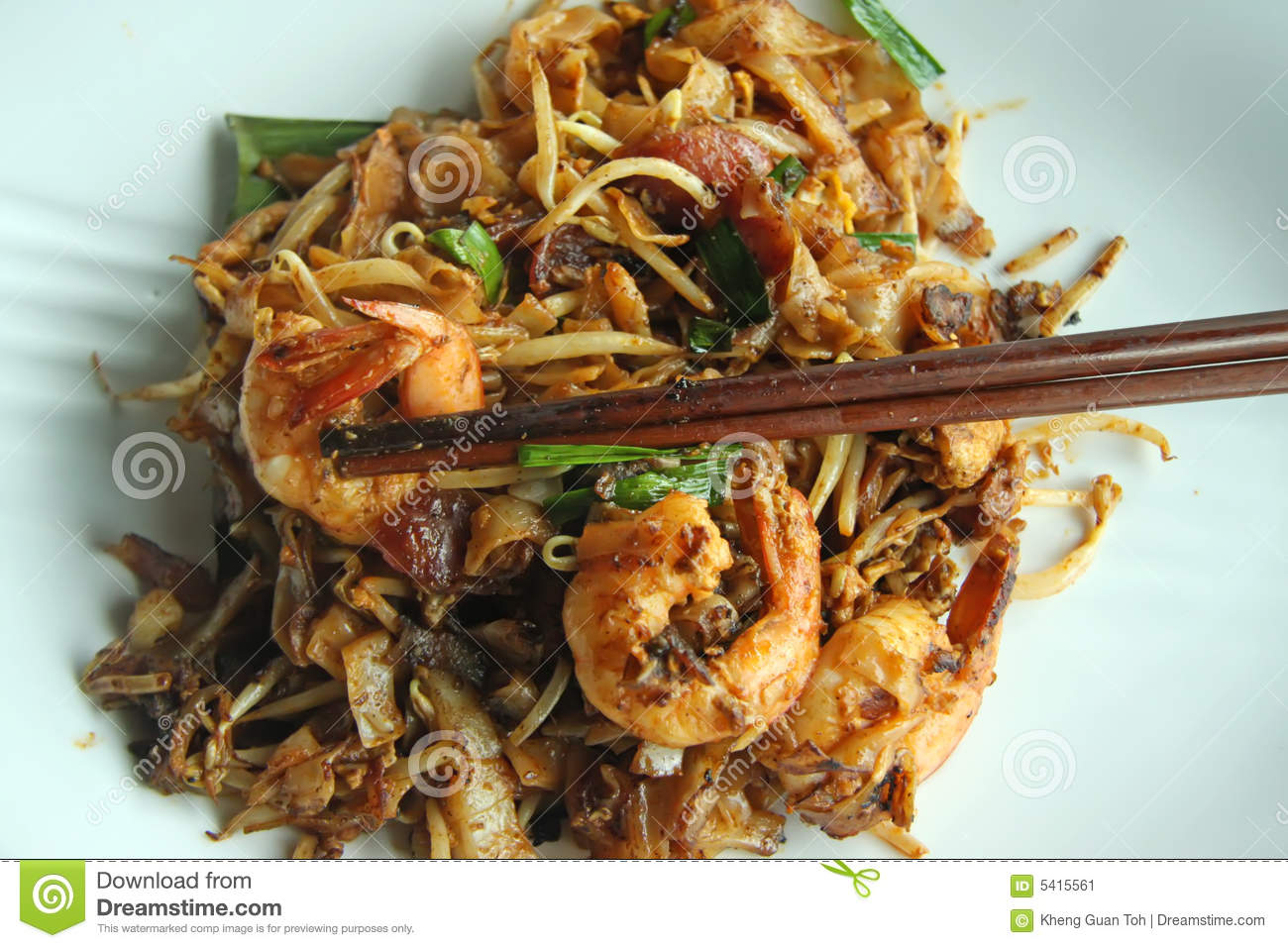 Fried asian noodles stock image image 5415561 for Authentic malaysian cuisine