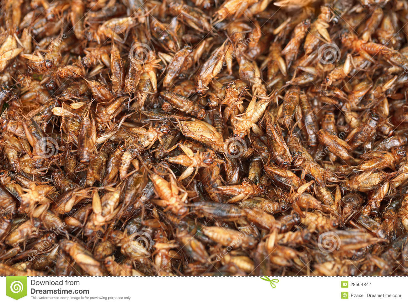 Fried Crickets On The Eastern Market Royalty Free Stock ...