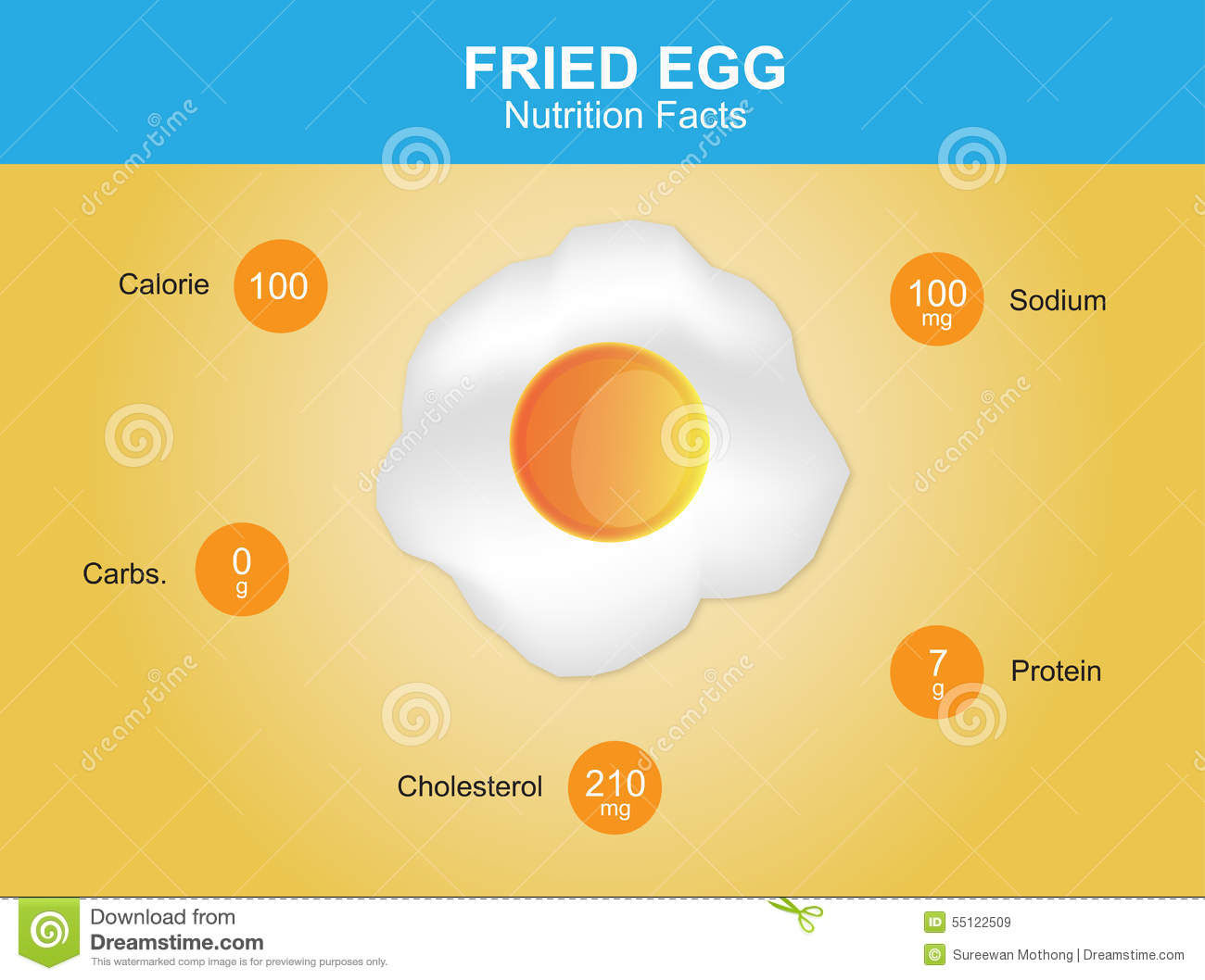 Vector Of Nutrition Facts Egg Stock Vector - Image: 45854337