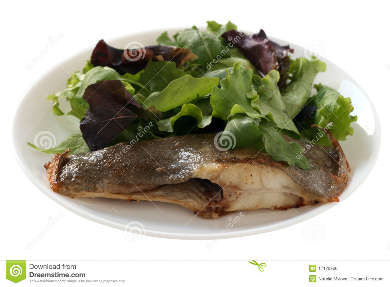 Royalty Free Stock Image: Fried flounder with salad