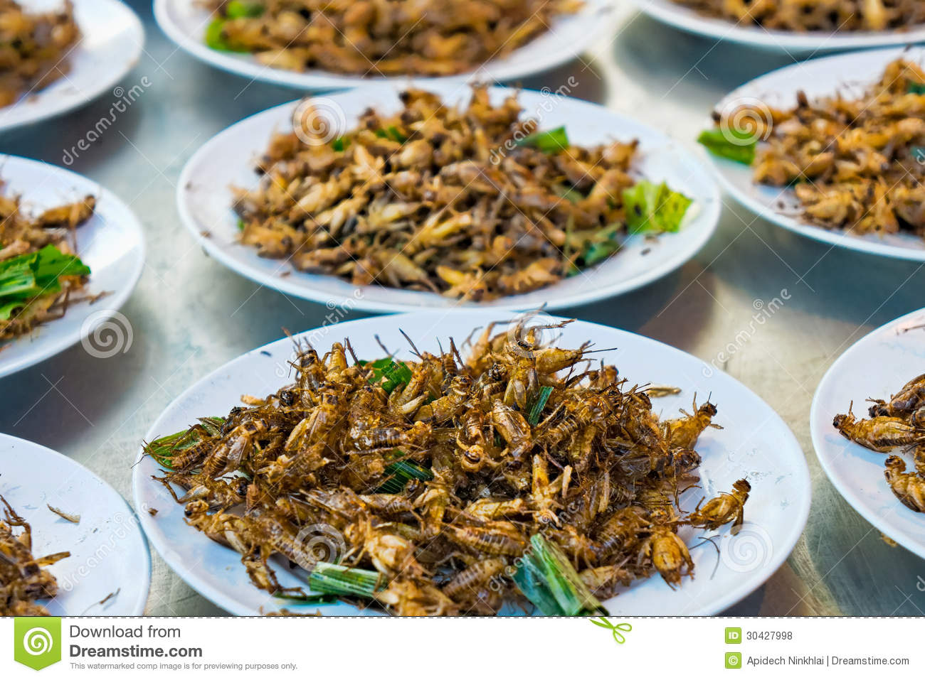 Fried Grasshoppers Royalty Free Stock Photos - Image: 30427998