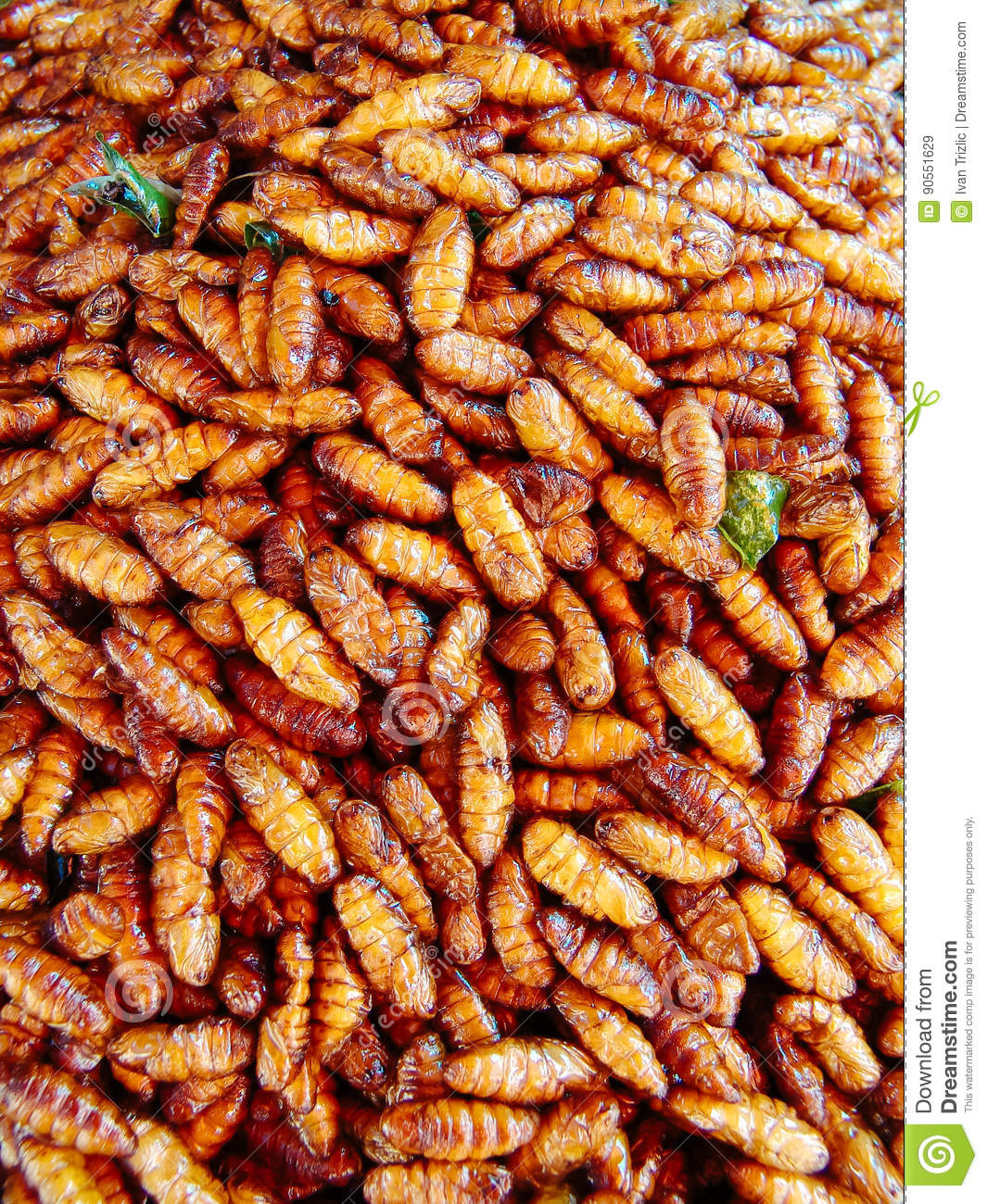 Fried insects on the street food stalls of Asia