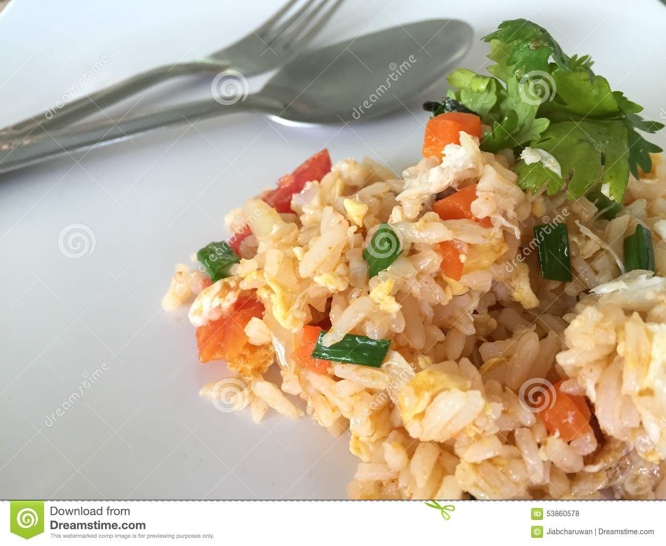 Fried rice with fork and spoon on the white dish stock photo download comp ccuart Images
