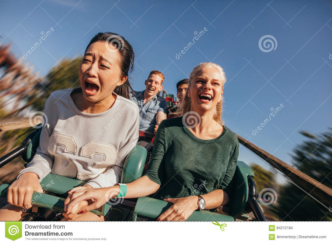 Download Friends Cheering And Riding Roller Coaster At Amusement Park Stock Photo - Image of multiracial, laughing: 84212184
