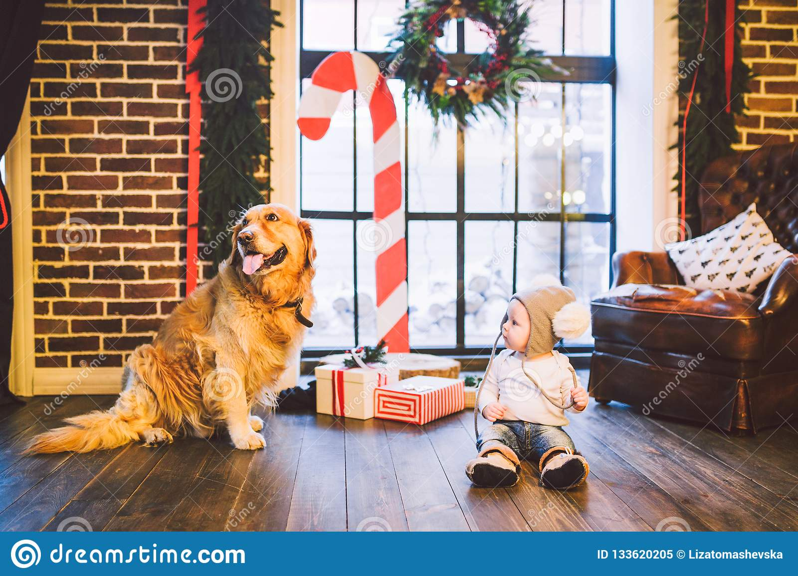 Friendship man child and dog pet. Theme Christmas New Year Winter Holidays. Baby boy crawling learns walk wooden floor decorated