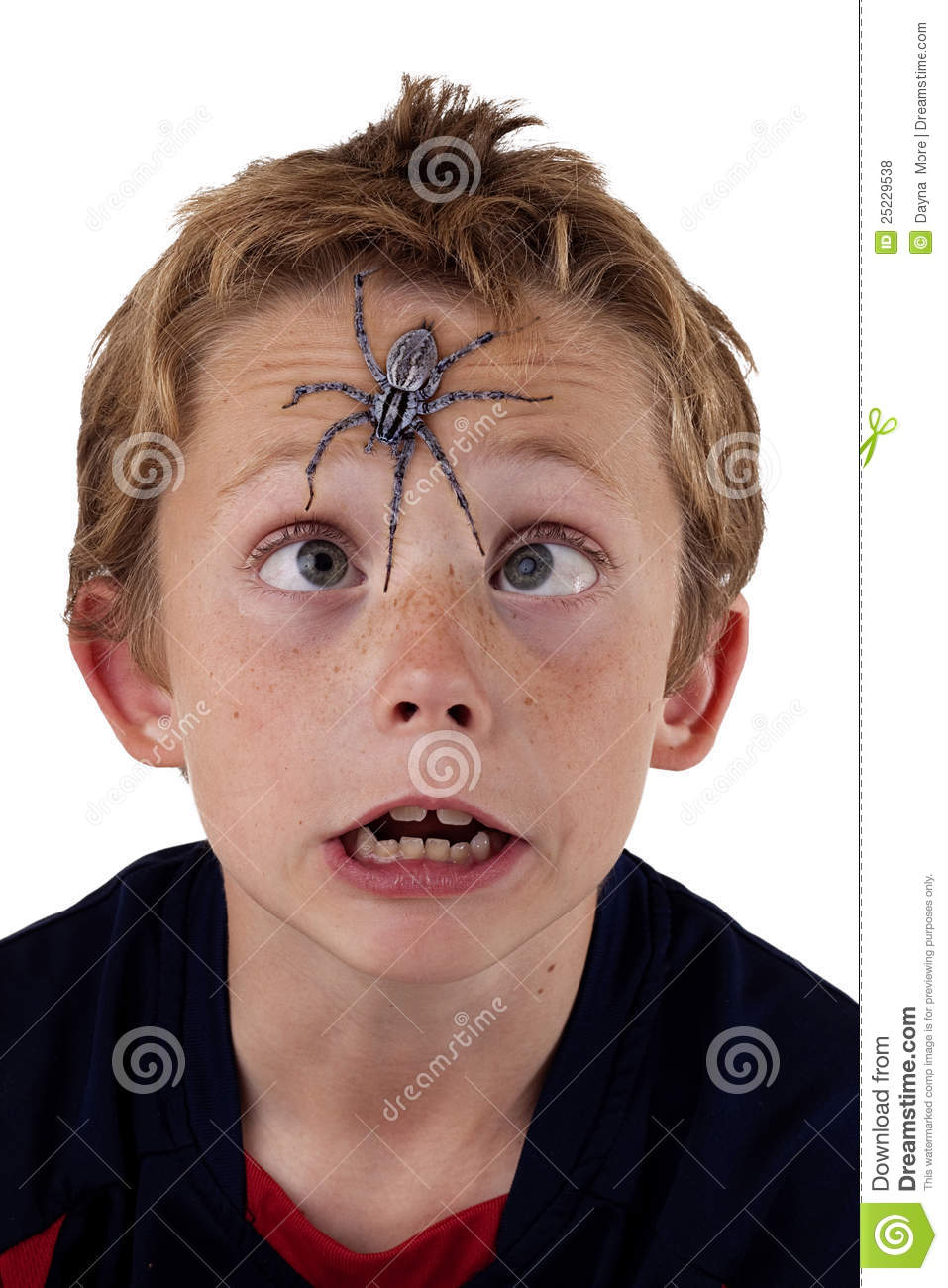 Frightened Boy With Spider Royalty Free Stock Photos - Image: 25229538