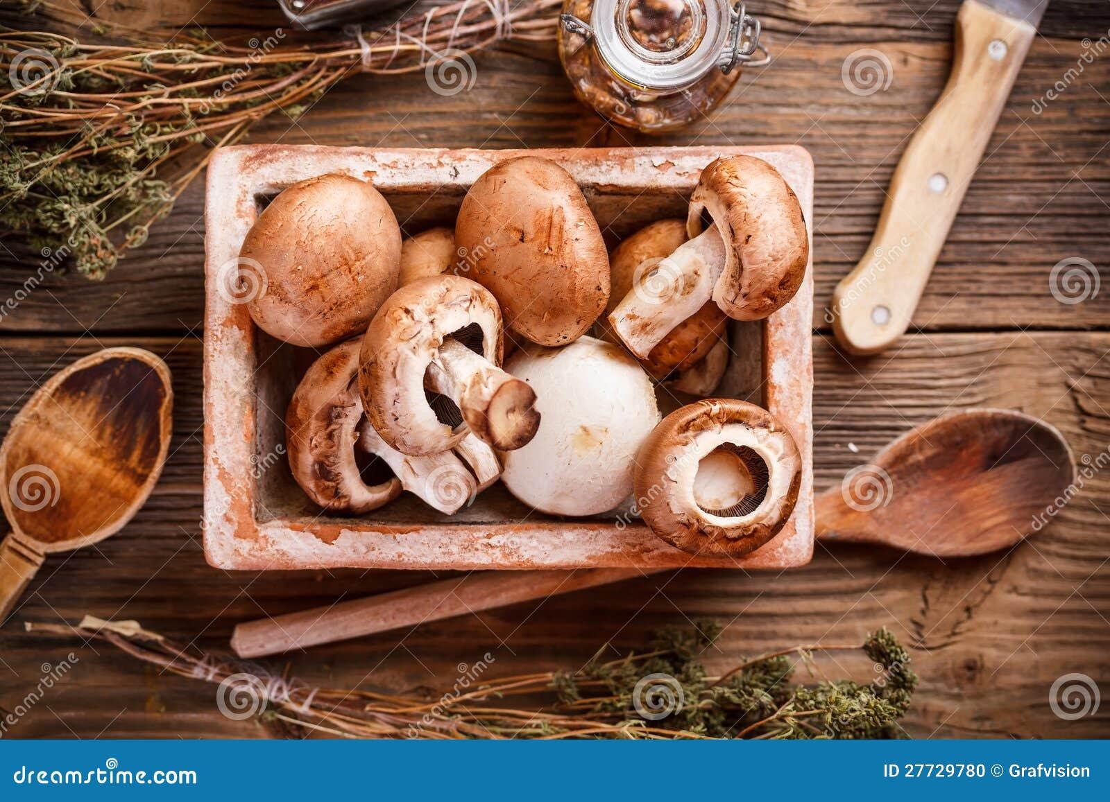 Frische braune Pilze