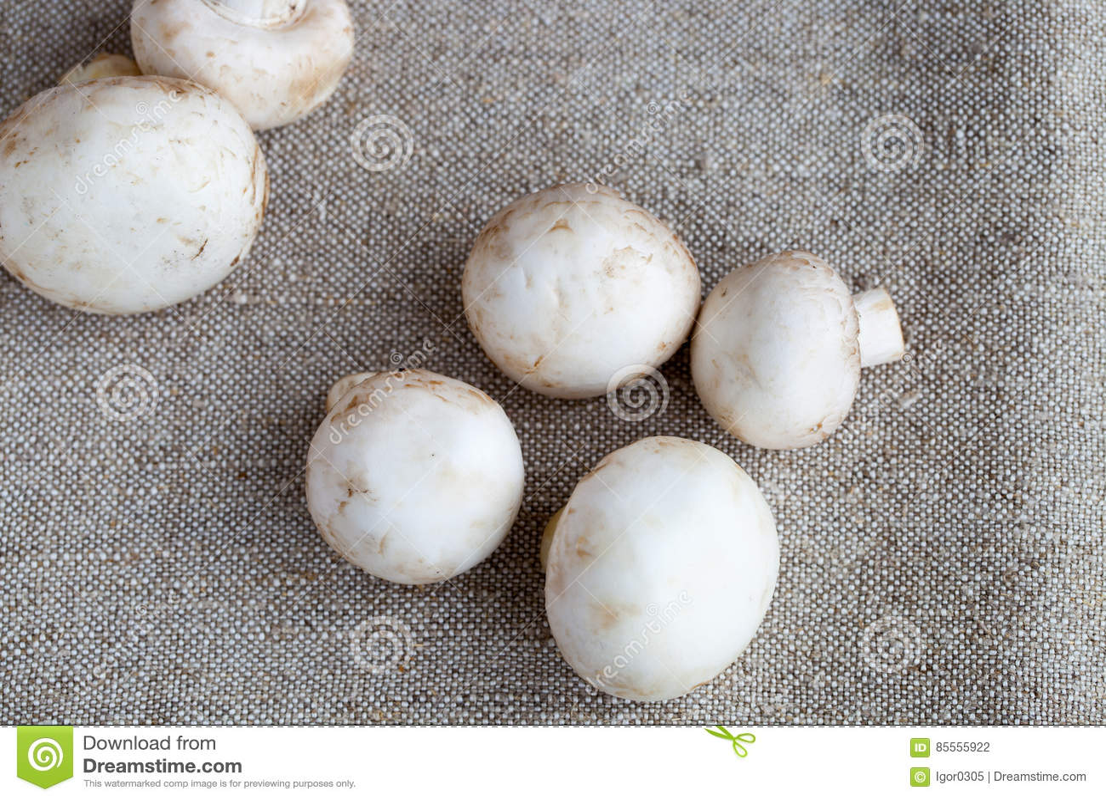 Frische Champignons