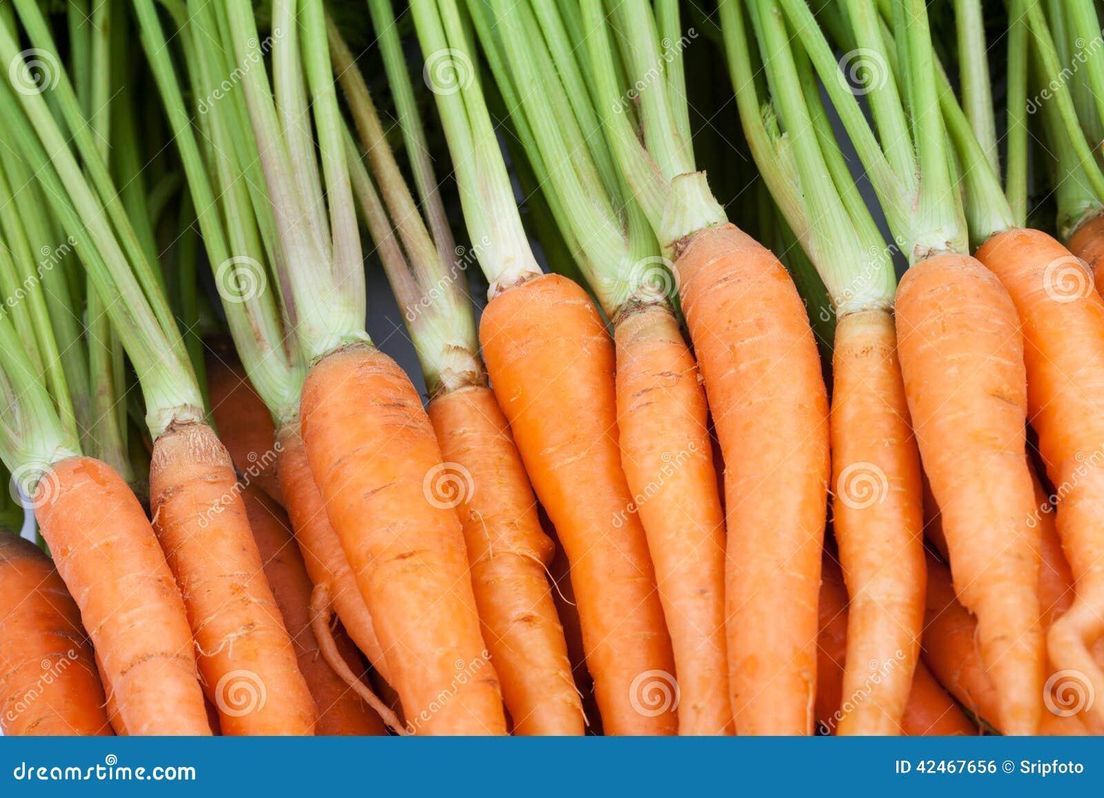Frische Karotte auf weißem Hintergrund