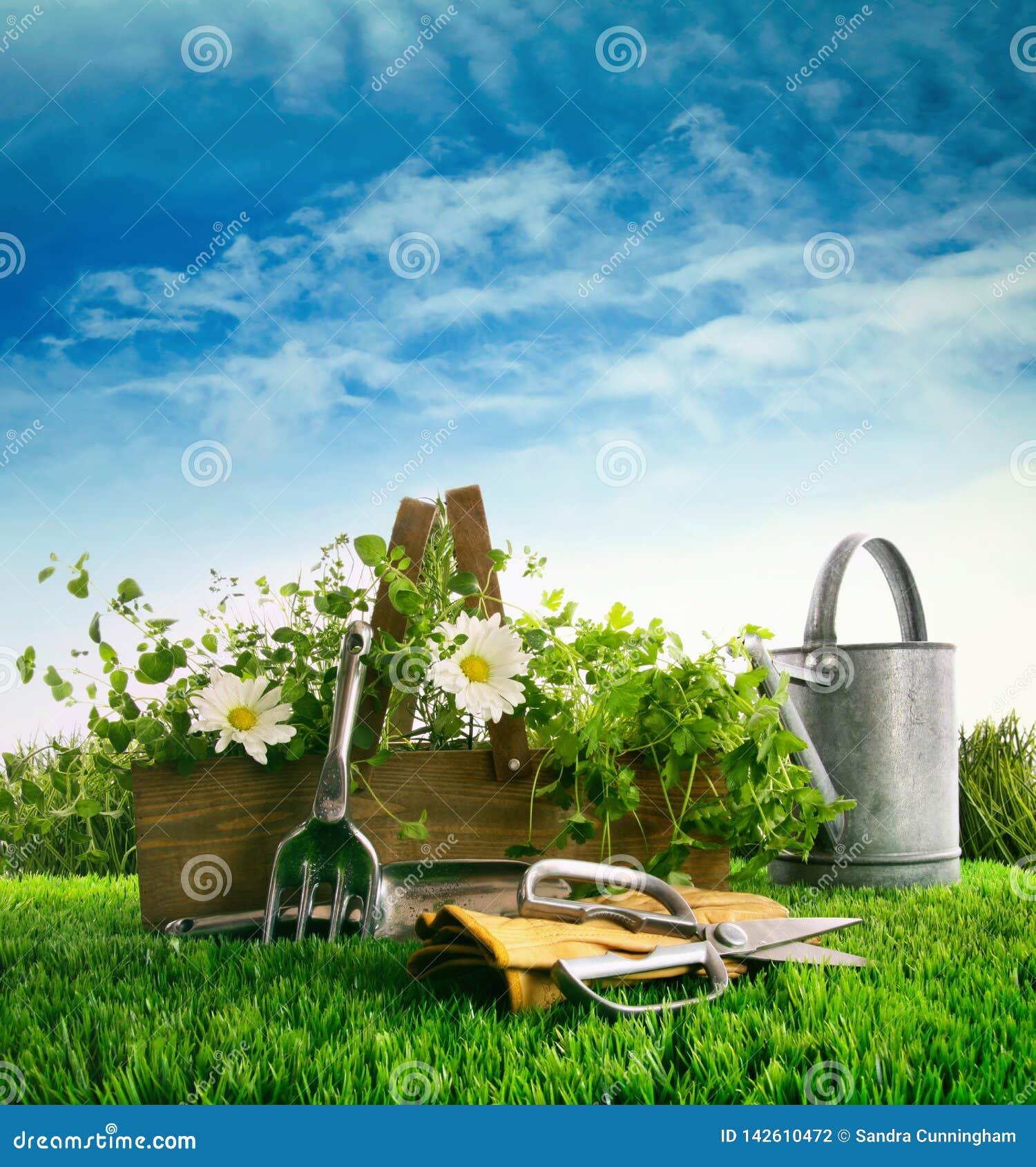 Frische Kräuter und Blumen mit Gartenwerkzeugen im Gras