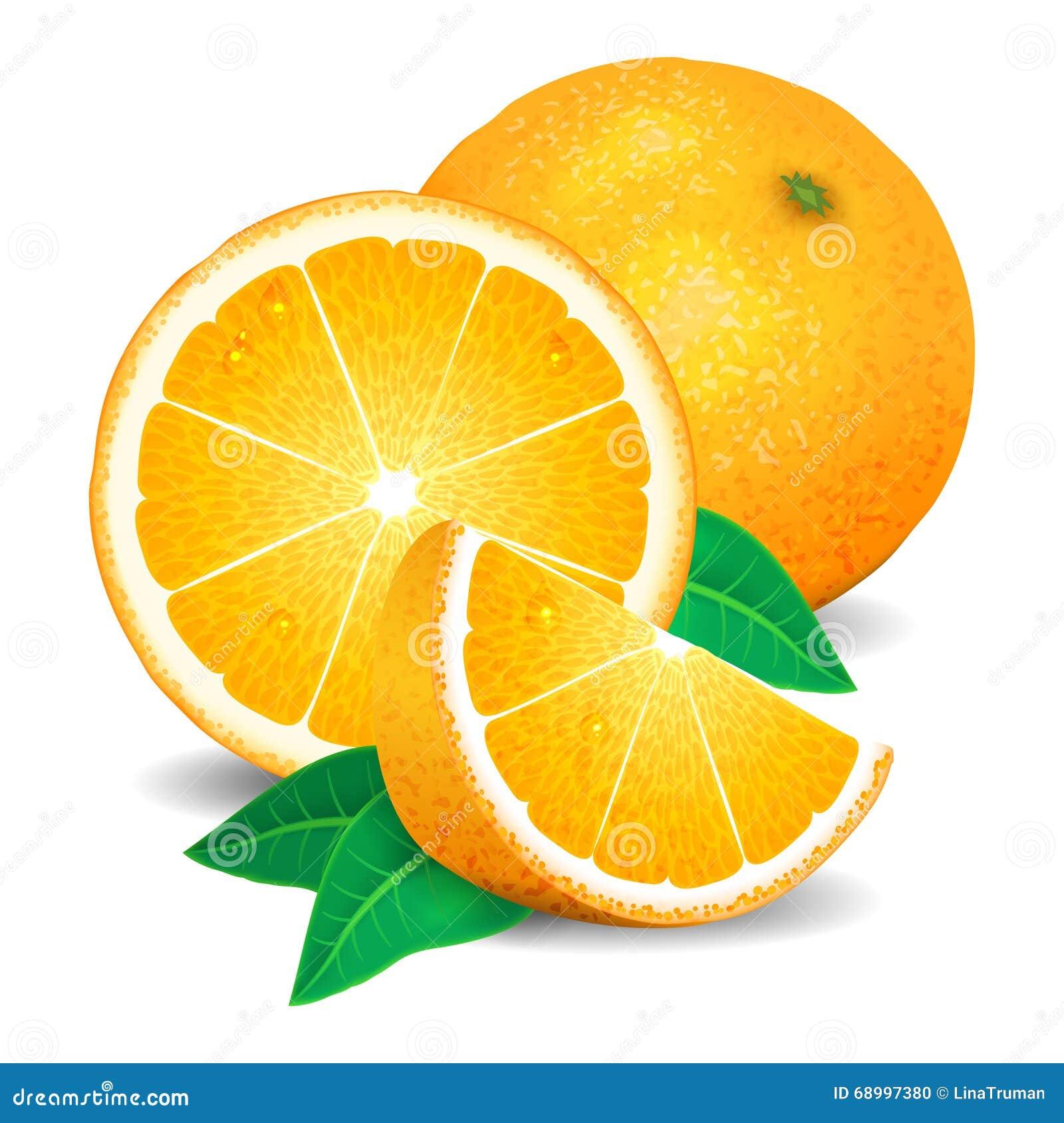 Frische Orangen Frucht, Stücke der Orange Realistische Orangen, Vektor