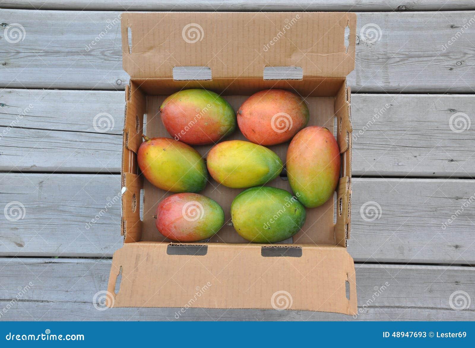Frische süße Mangos