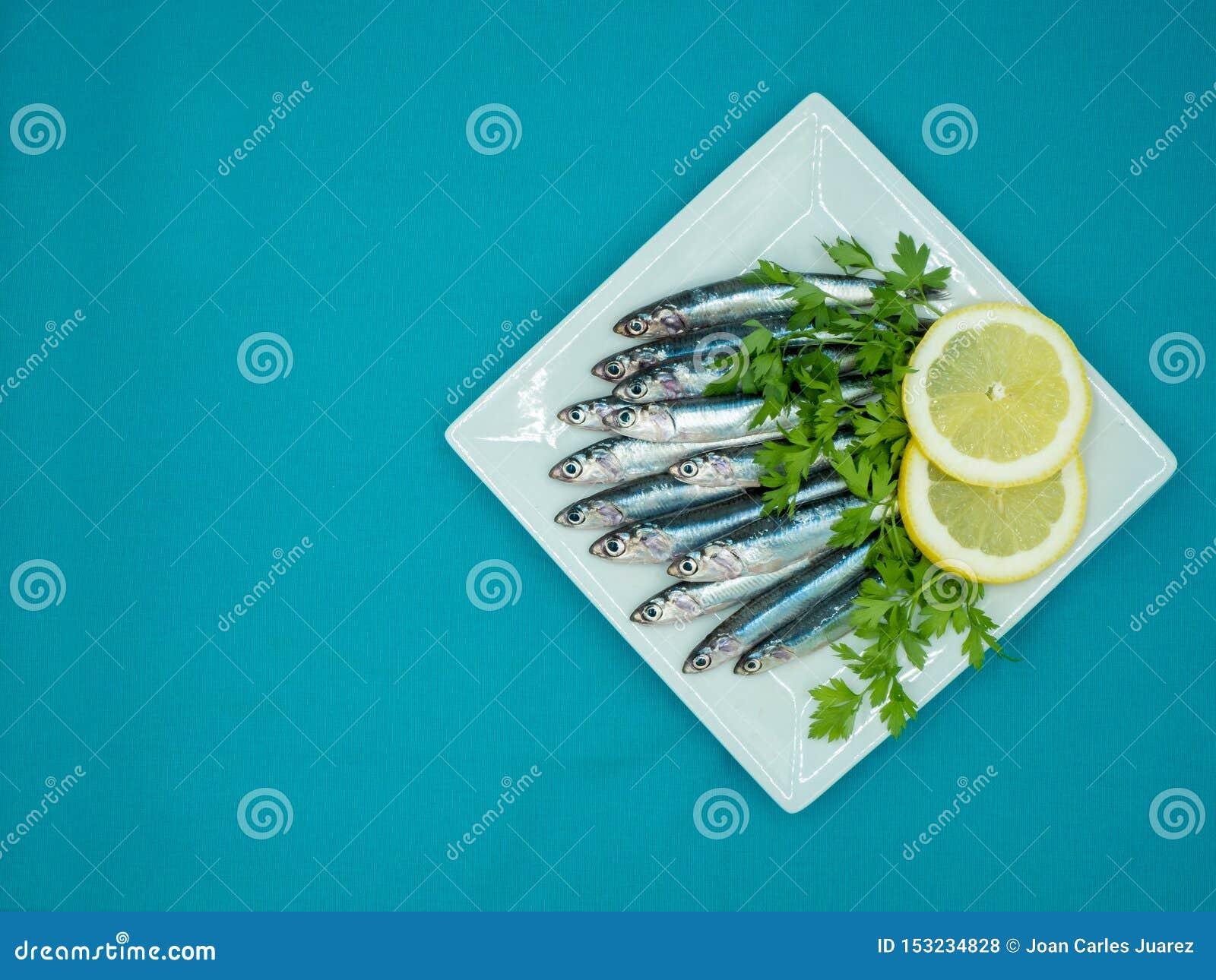 Frische Sardellen in einer Platte auf einem blauen Hintergrund