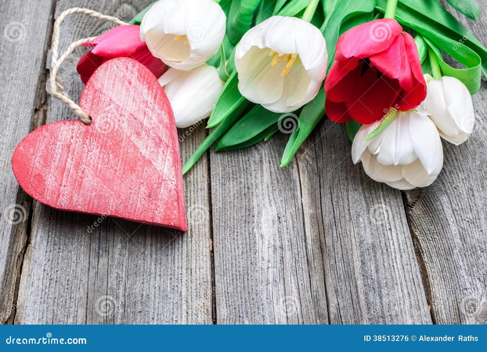 Frische Tulpen mit einem roten Herzen
