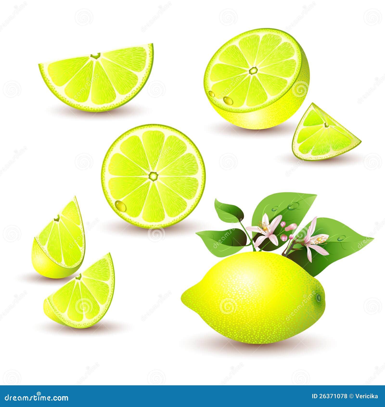 Frische Zitrone mit Blumen