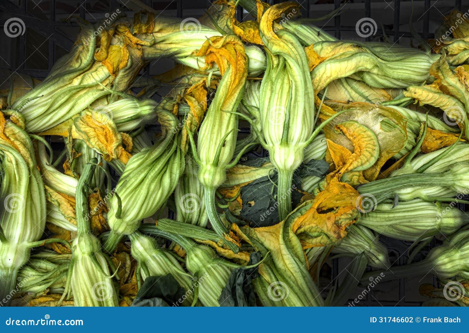 Frische Zucchini oder Zucchiniblumen