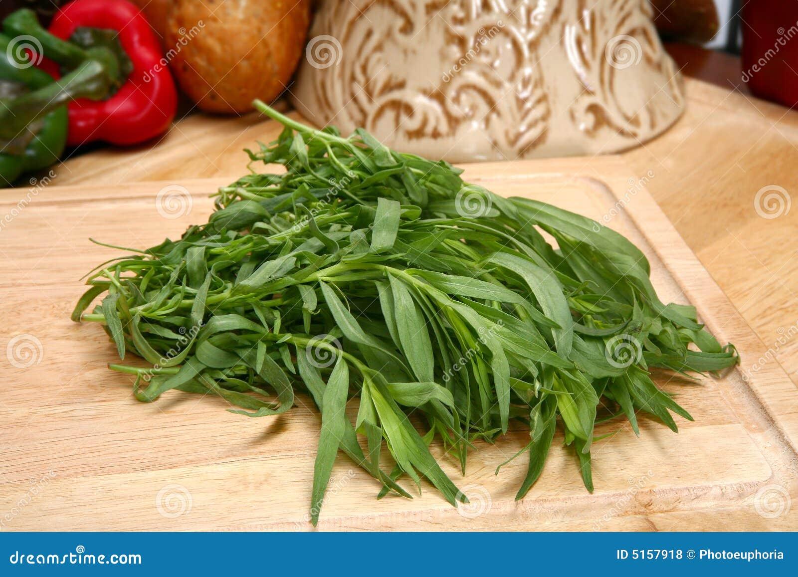 Frischer estragon lizenzfreie stockfotos bild 5157918 for Cuisine x stubru