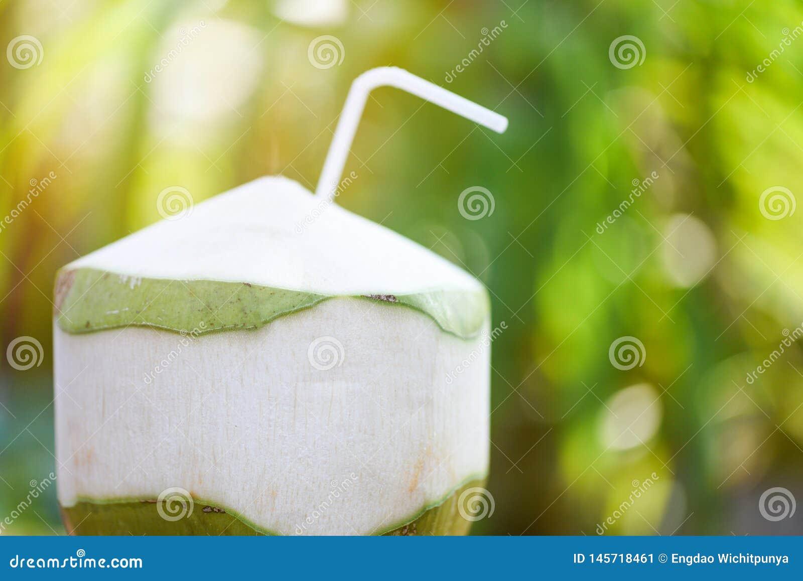 Frischer Kokosnusssaft, der junge Kokosnussfrucht auf Sommernatur-Grünhintergrund trinkt