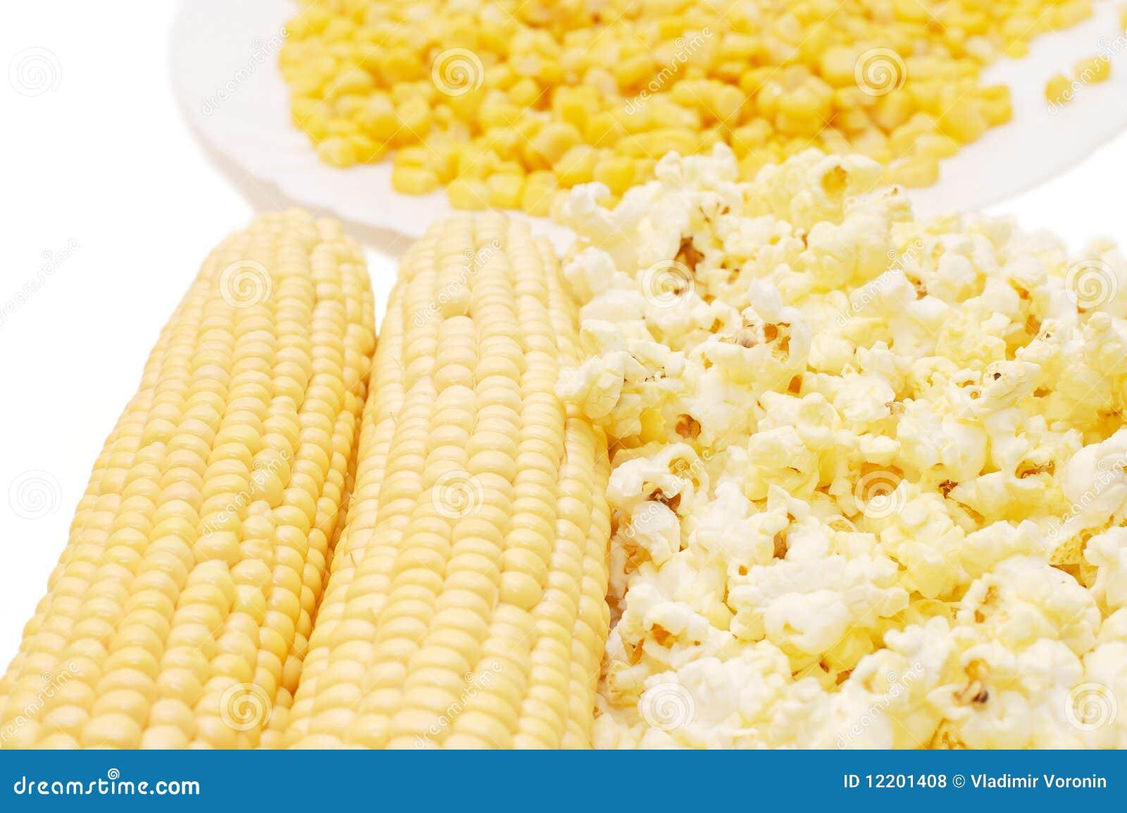 Frischer Mais, konservierter Mais