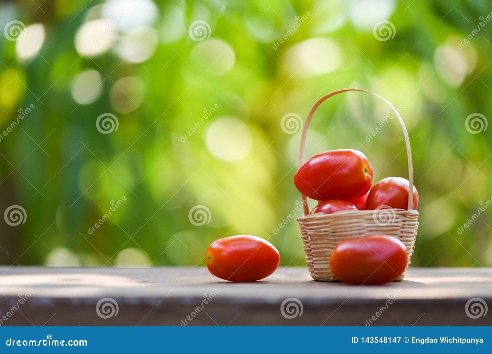 Frisches TomatenBeerenobst im Korb auf hölzernem und Naturgrünhintergrund
