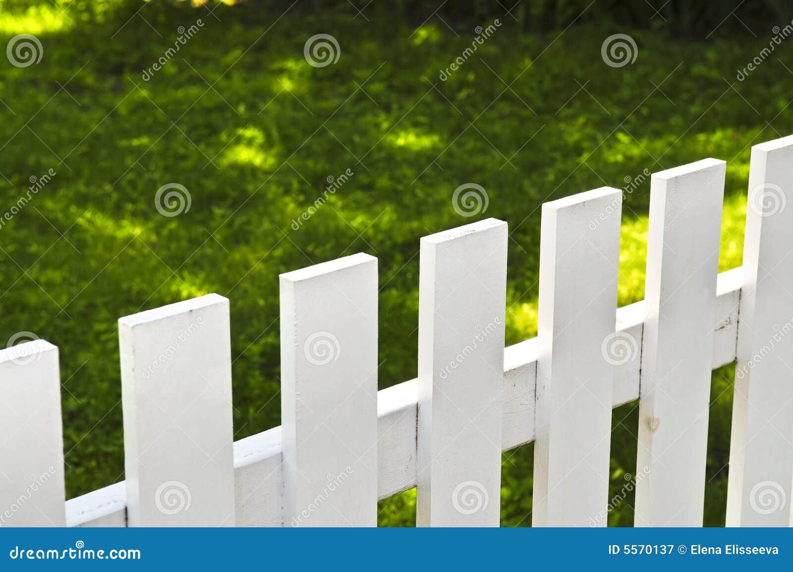 Främre vit gård för staket royaltyfri fotografi   bild: 5570137