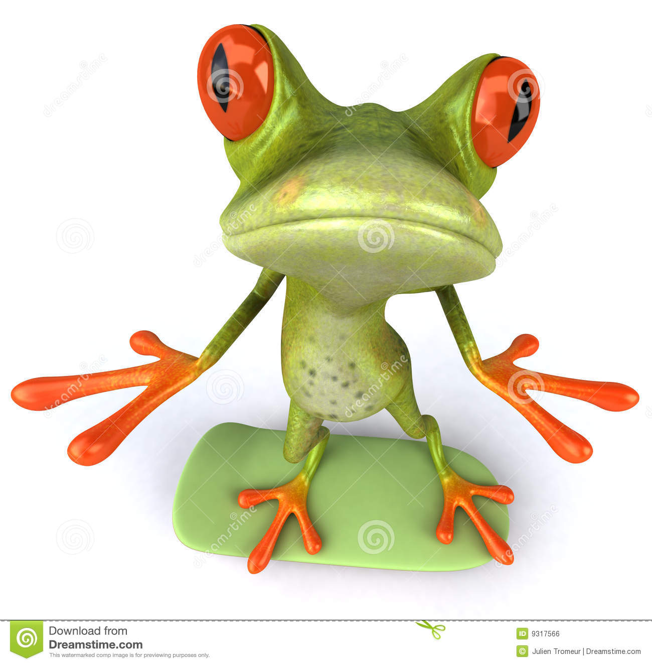 American green tree frog - Wikipedia