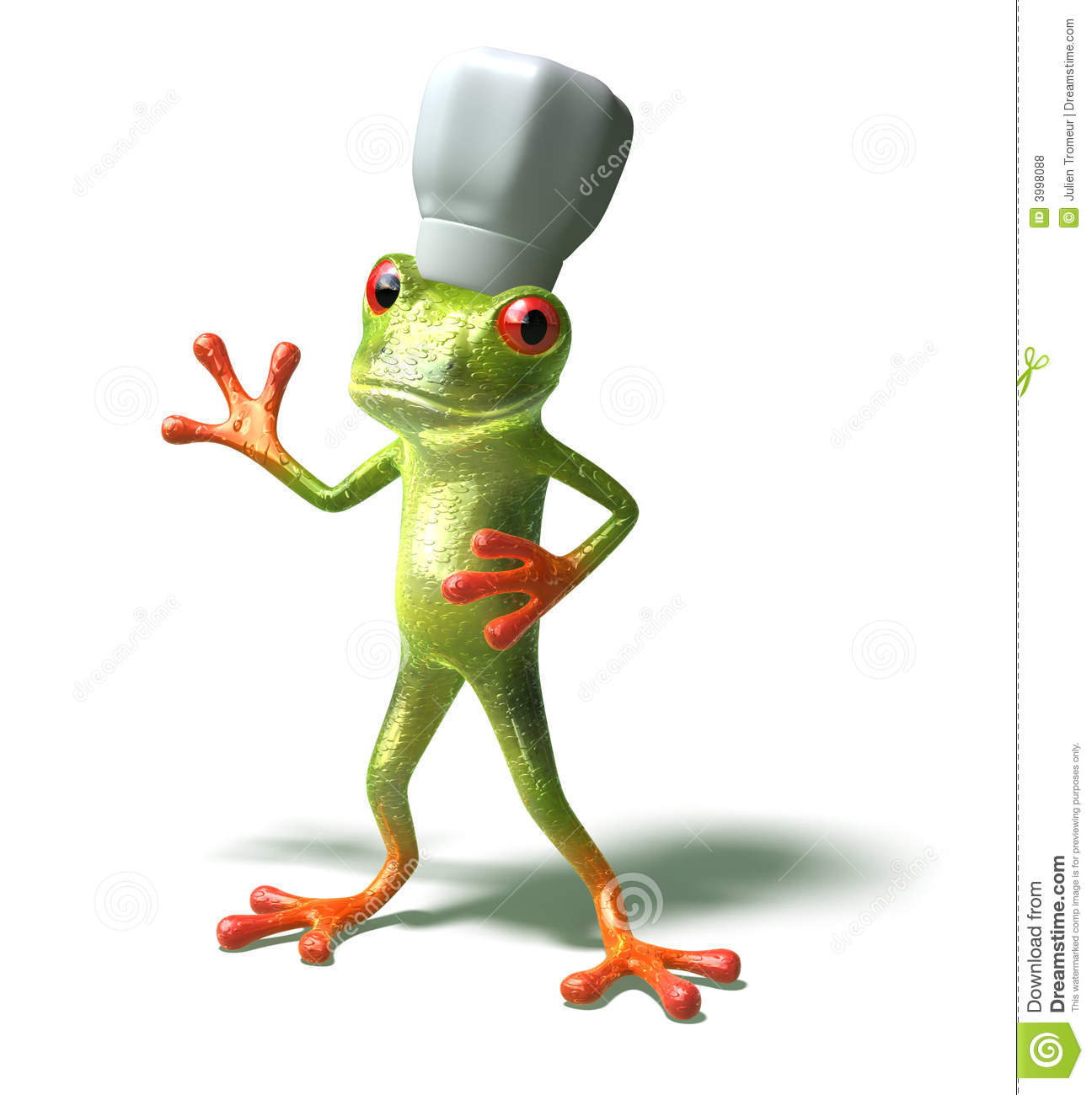 Frog Chef Royalty Free Stock Photos