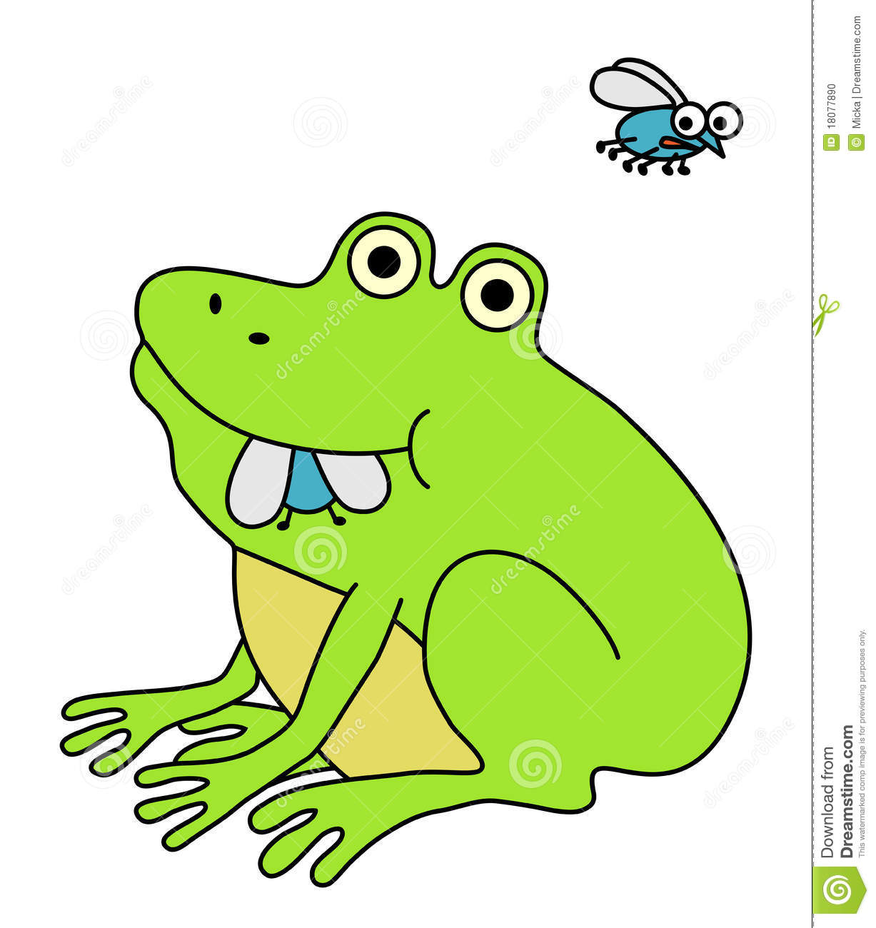 Frog Eating Fat Fly Stock Photo - Image: 18077890