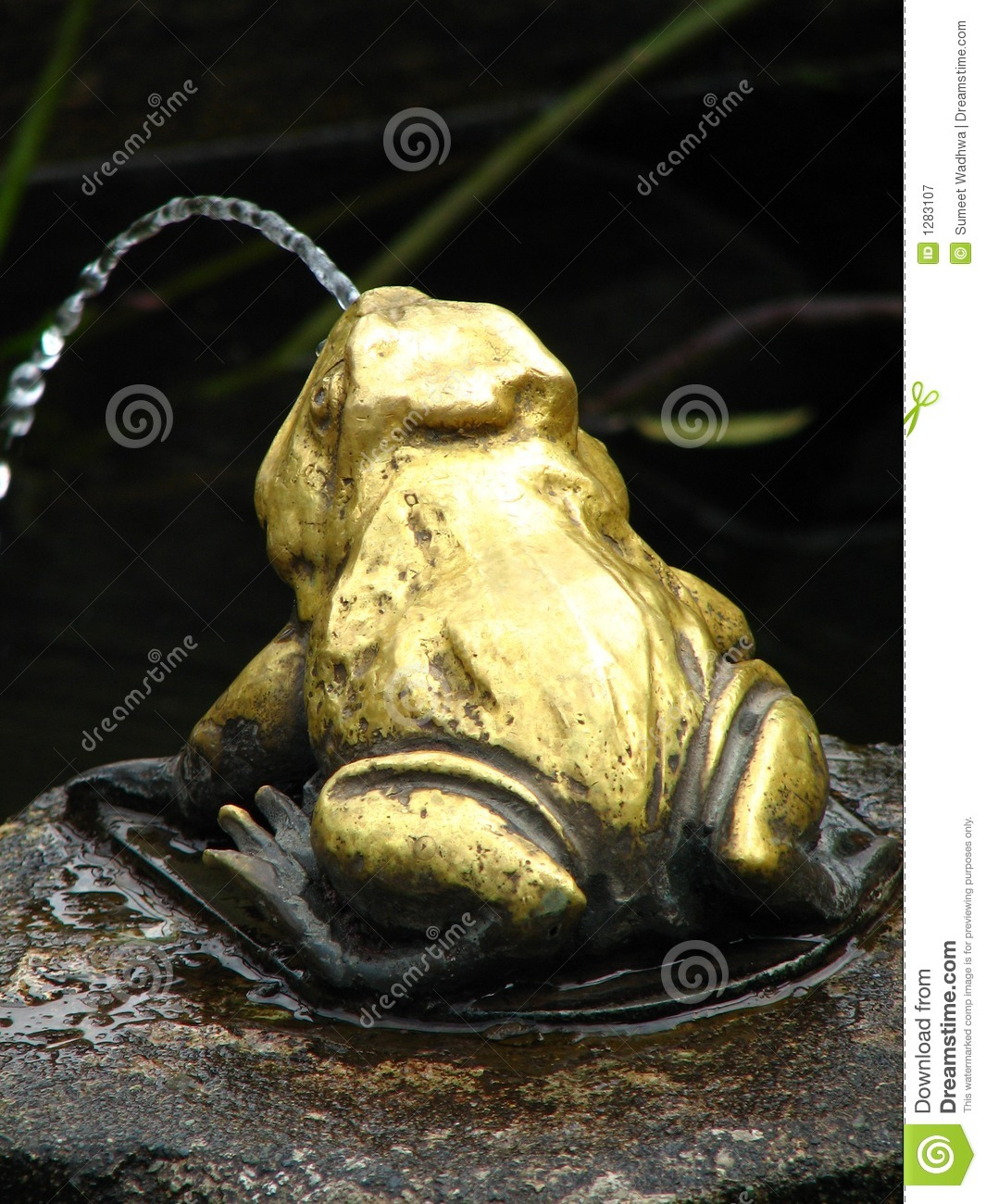Frog Fountain In A Garden Pond Stock Image Image 1283107