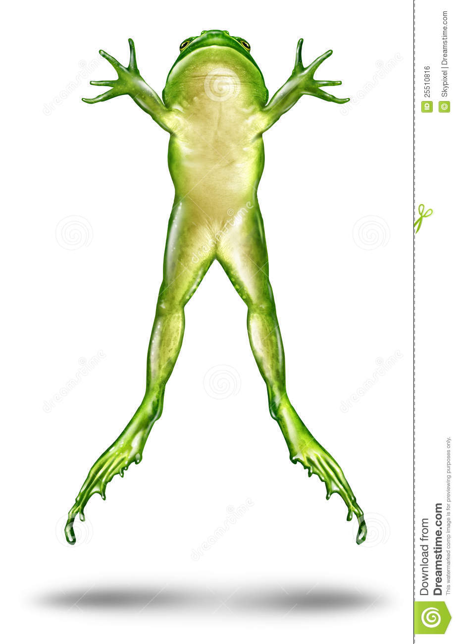 Frog Jumping up in the air as a dynamic green amphibian on a white ...