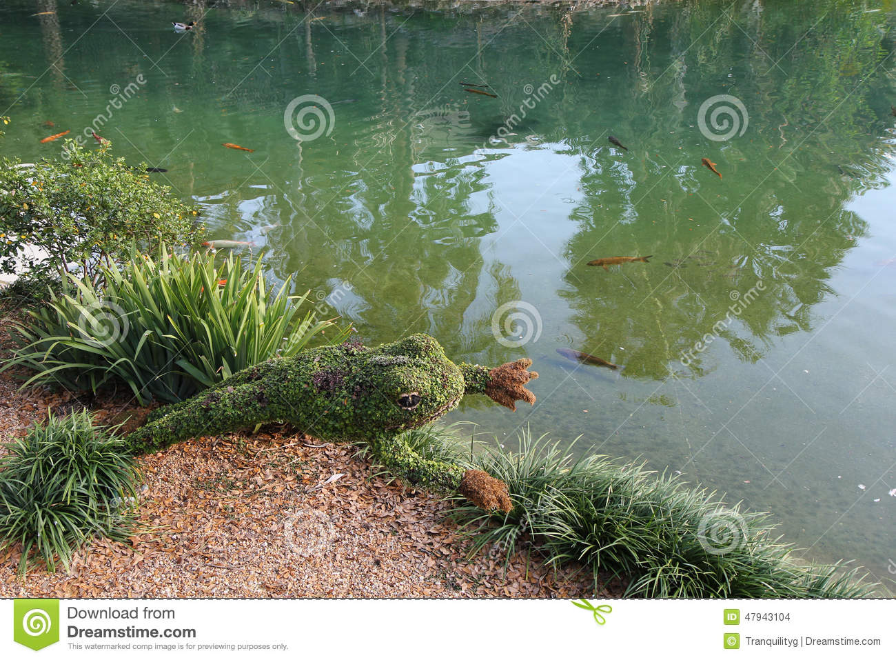 Frog plant topiary stock photo image 47943104 for Planter fish pond