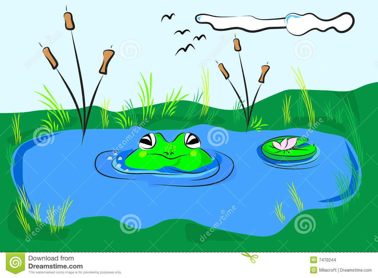 frog in the pond stock vector  illustration of grass  scrapbook
