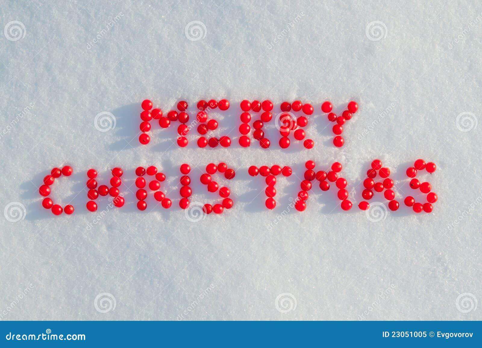 frohe weihnachten geschrieben durch beeren auf den schnee. Black Bedroom Furniture Sets. Home Design Ideas