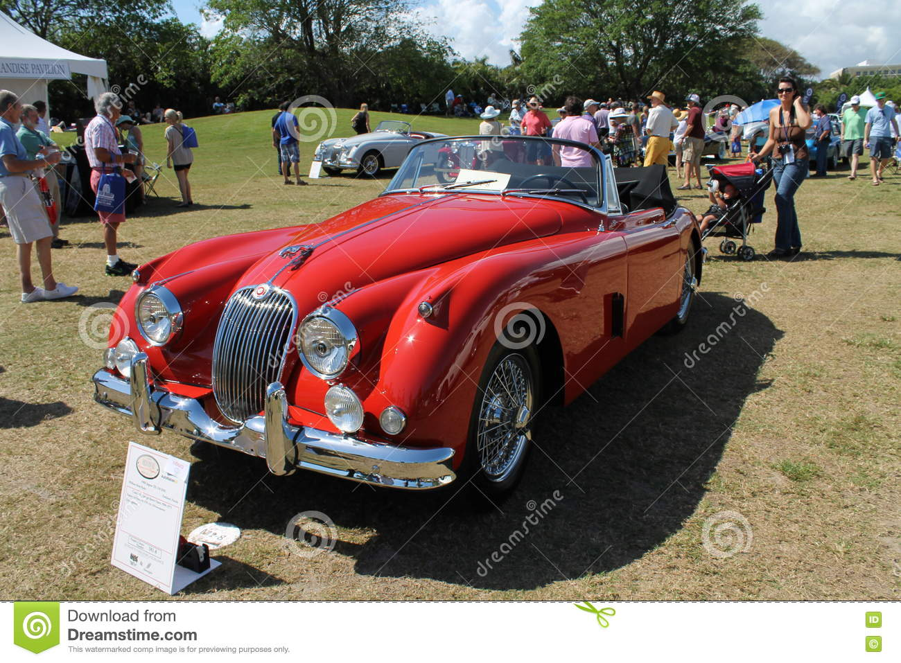 Front Classic Jag Xk Convertible Editorial Photography Image Of Exotic Bumper 72817857