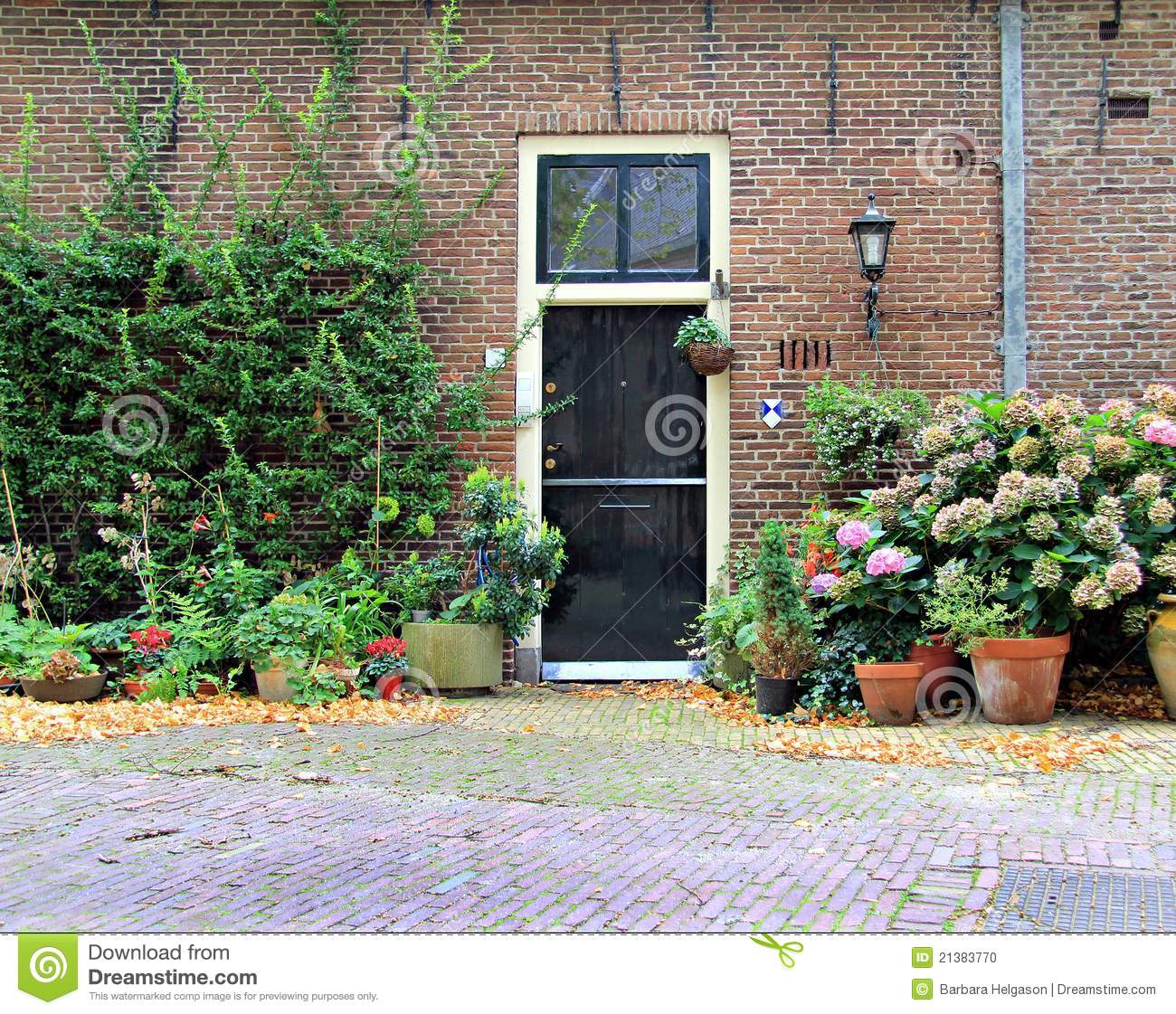 1121 #558546 Front Door Europe Stock Photo Image: 21383770 wallpaper European Front Doors 46251300