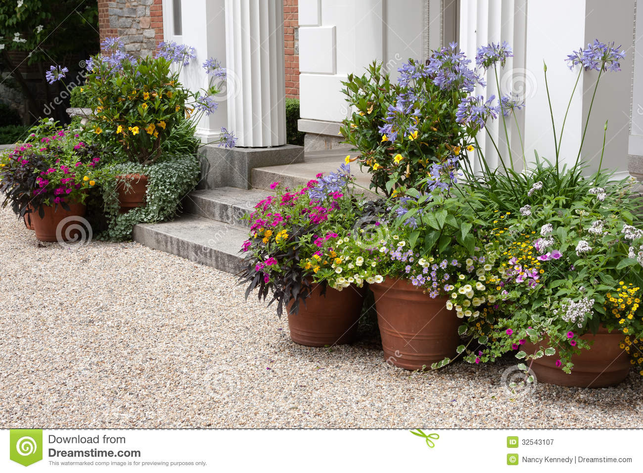 Front entrance royalty free stock photography image - Outdoor plants for front door ...