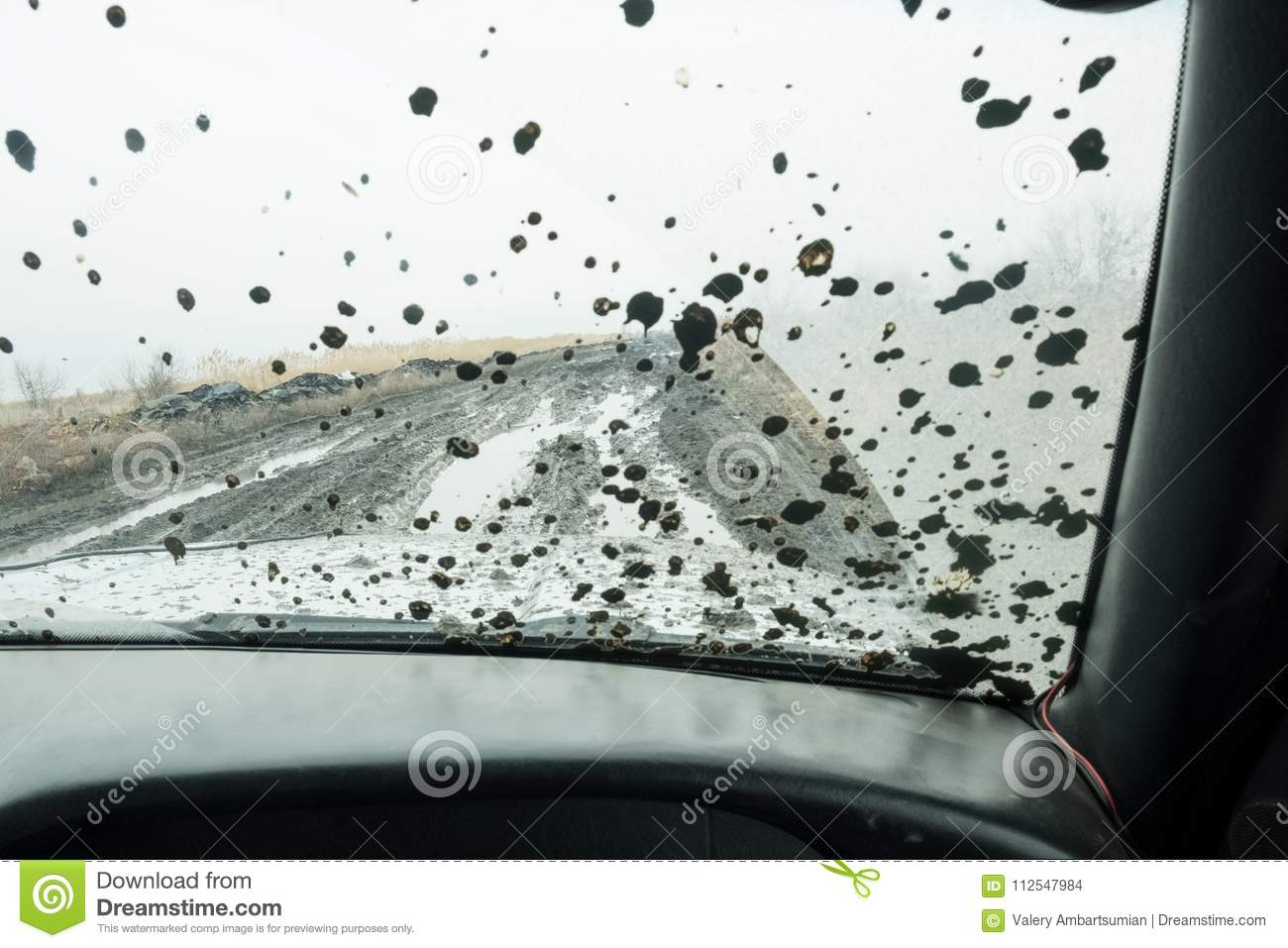 The front glass of the car is stained with dirt