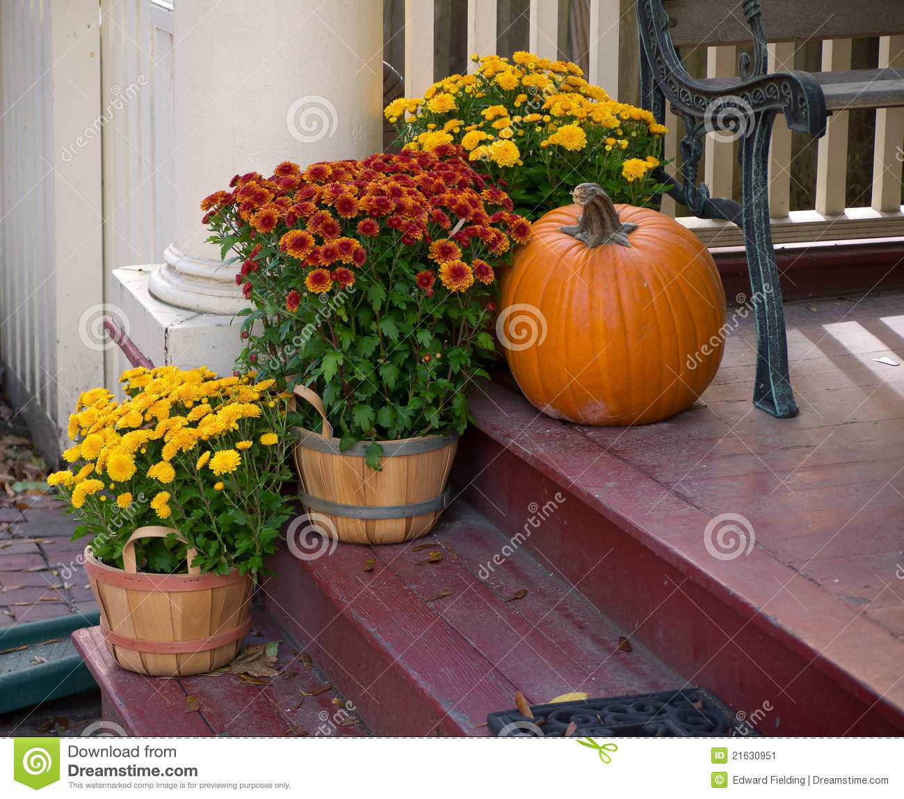 Red entrance door in front of residential house stock photo - Front Porch Fall Flowers Stock Image Image 21630951