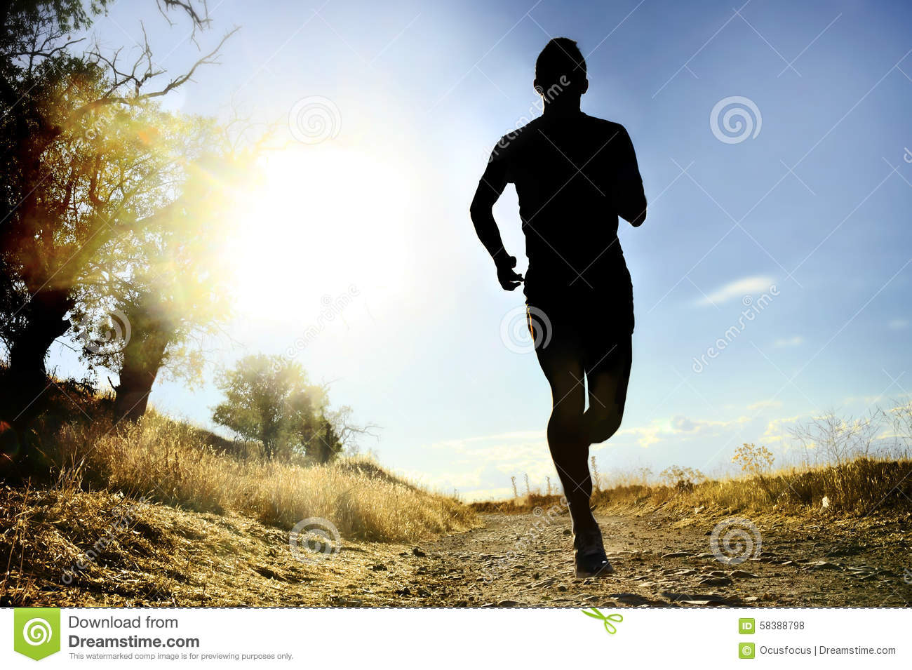 Front Silhouette Young Sport Man Running Cross Country ...