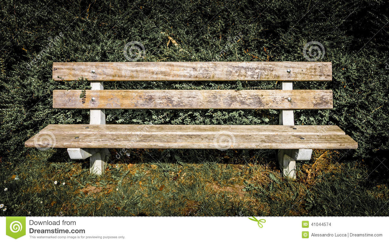Front View Of A Bench In A Park Stock Photo Image Of Plant Grass