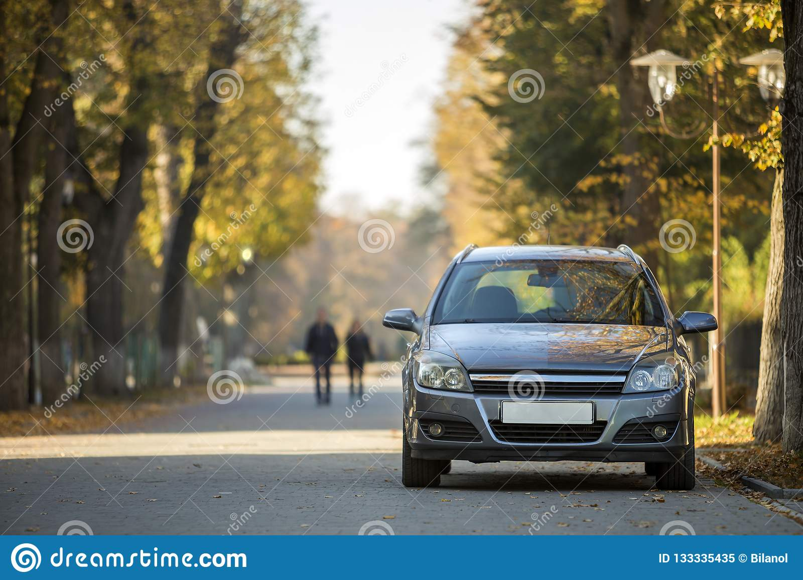 Front view of gray shiny empty car parked in quiet area on asphalt road at lamppost on blurred green and yellow trees