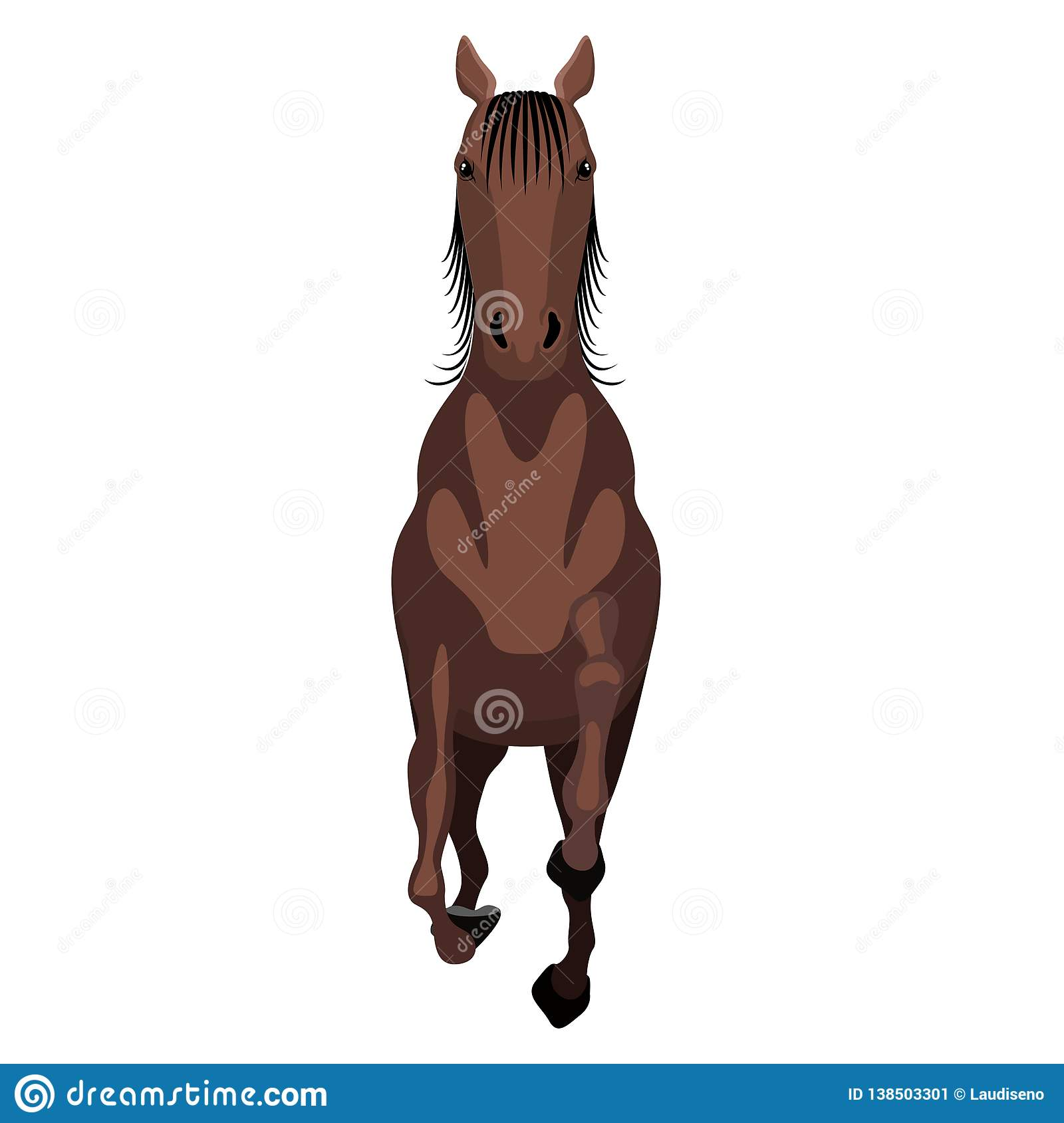 Front View Horse Stock Illustrations 415 Front View Horse Stock Illustrations Vectors Clipart Dreamstime