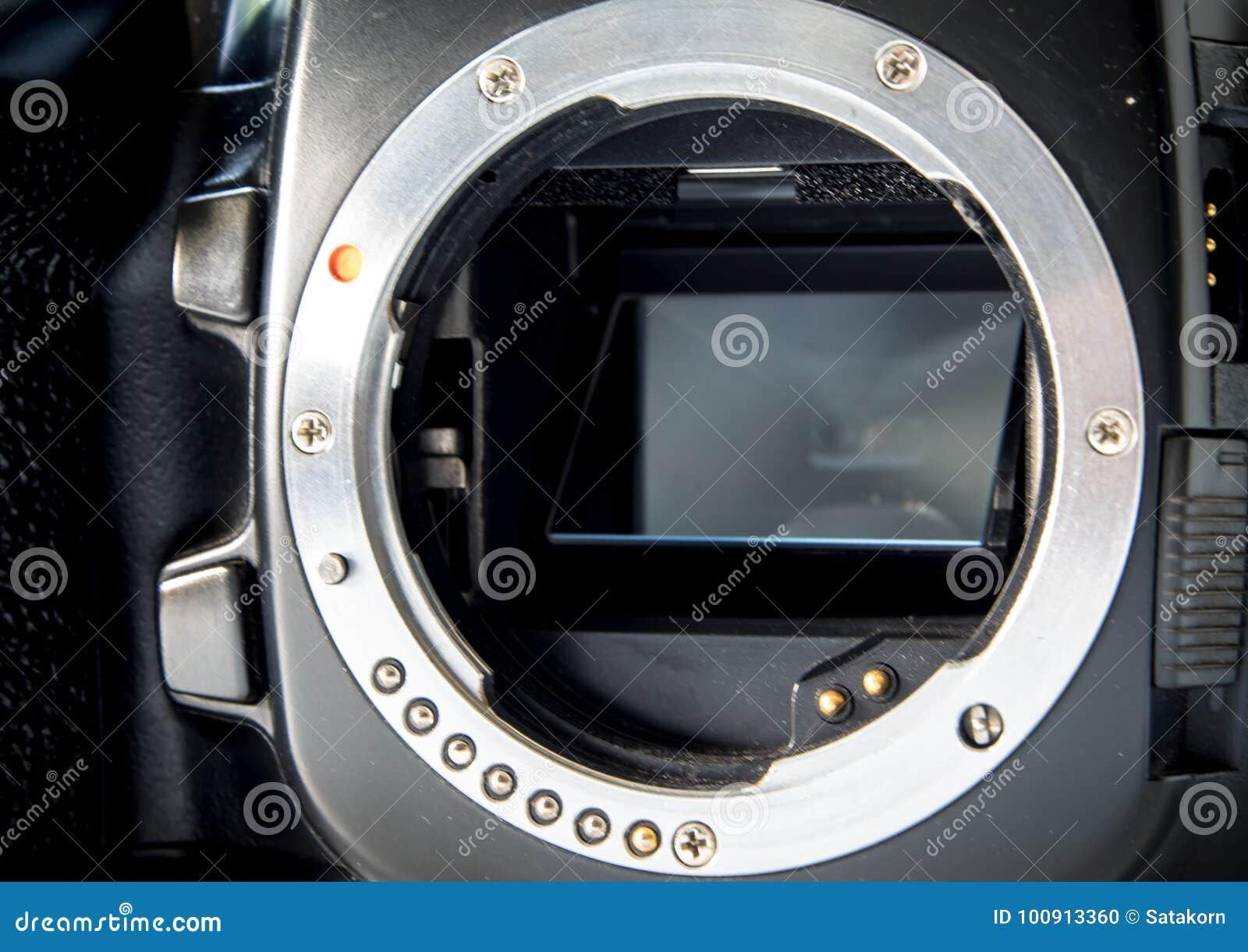 SLR camera body metal bayonet lens mount without lens