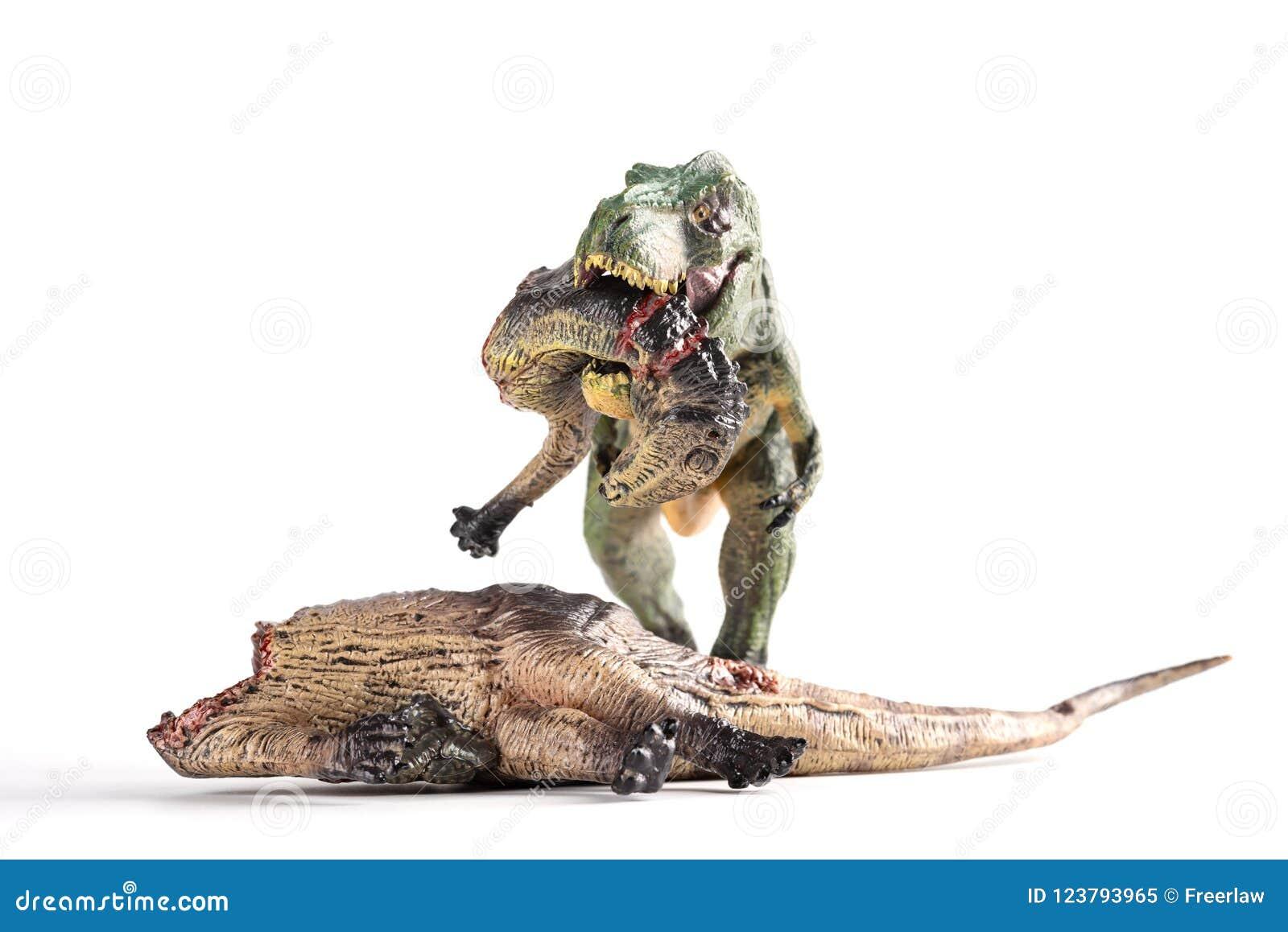 Front view tyrannosaurus biting a dinosaur body on white