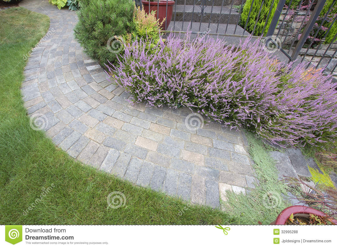 Front Yard Garden Curve Paver Path Top View Royalty Free