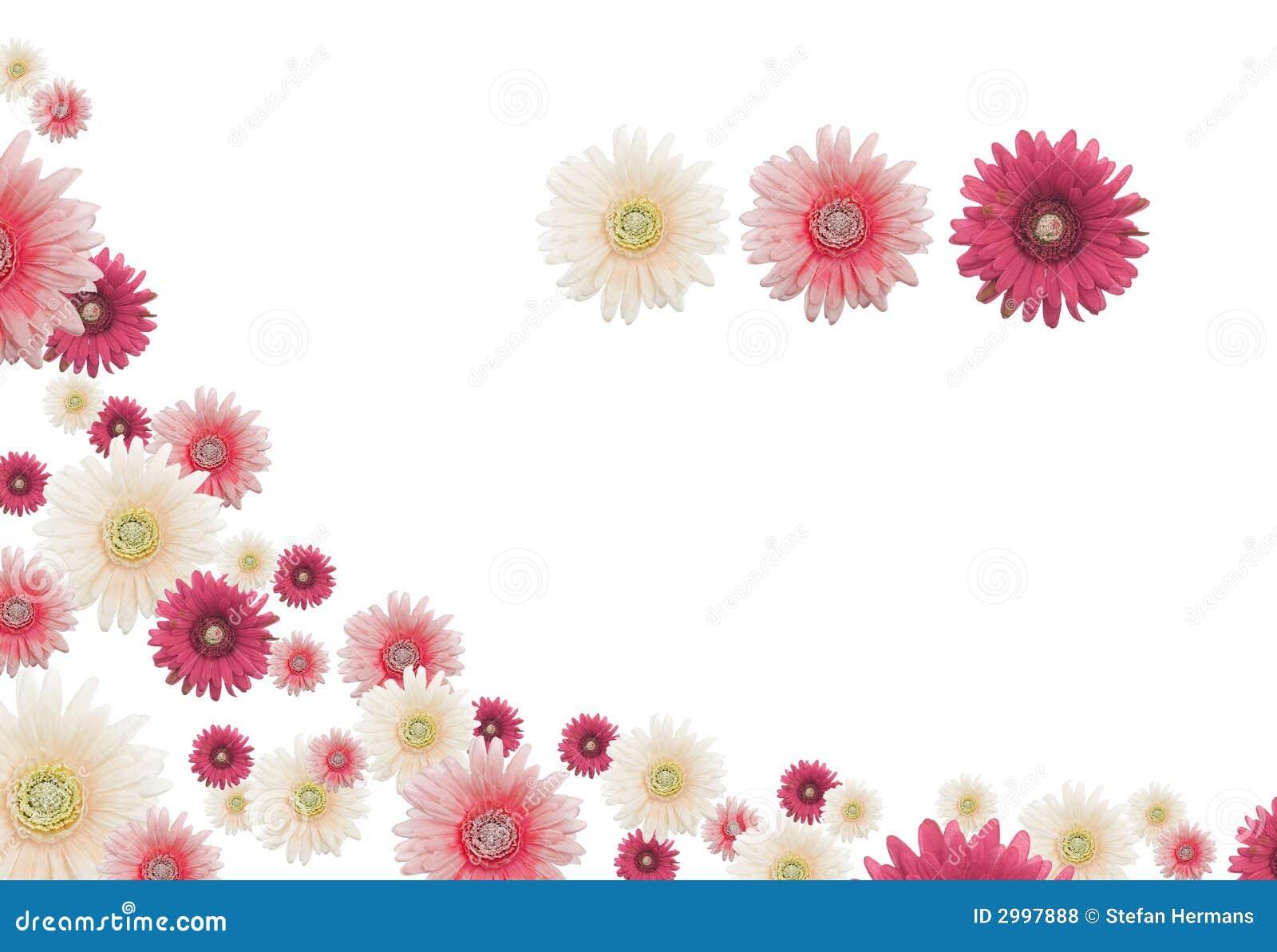 Frontera de la flor