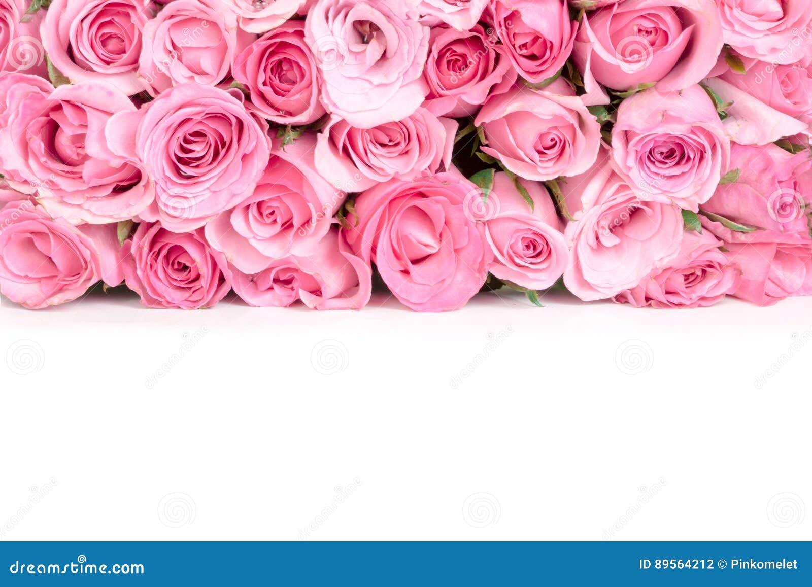 Frontière De Belle Rose Douce Fraîche De Rose Pour La Vallée