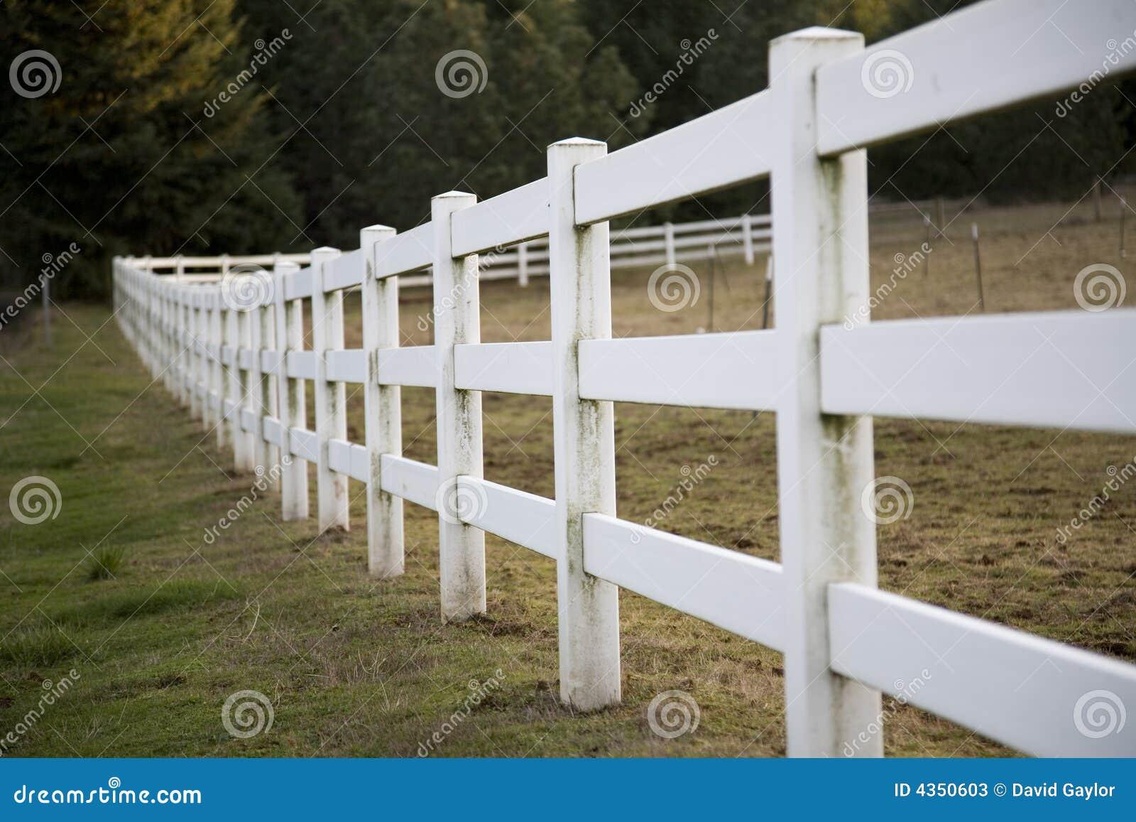 Frontière de sécurité de longeron blanche